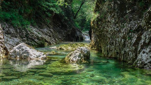 Rivers & Fish